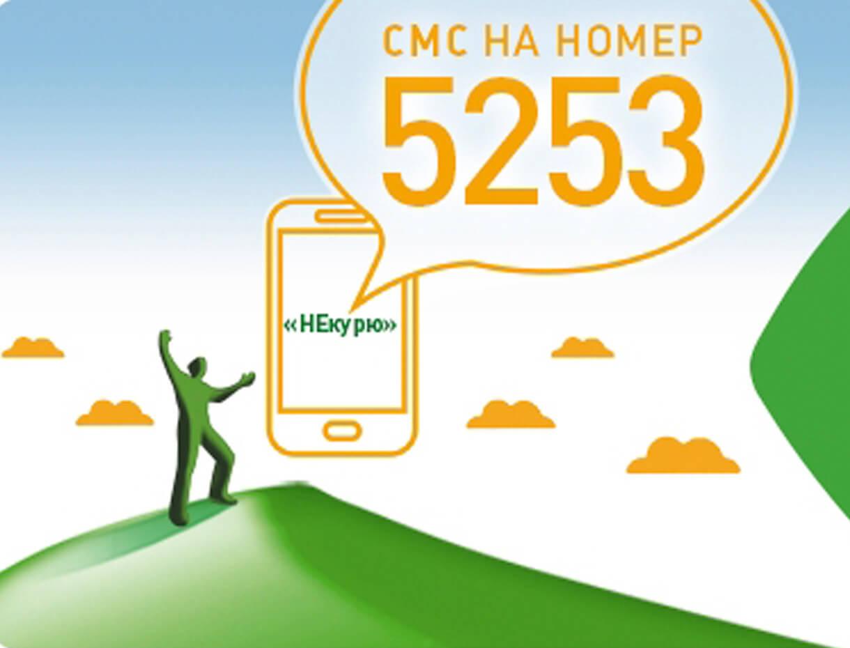 Бесплатная СМС-поддержка